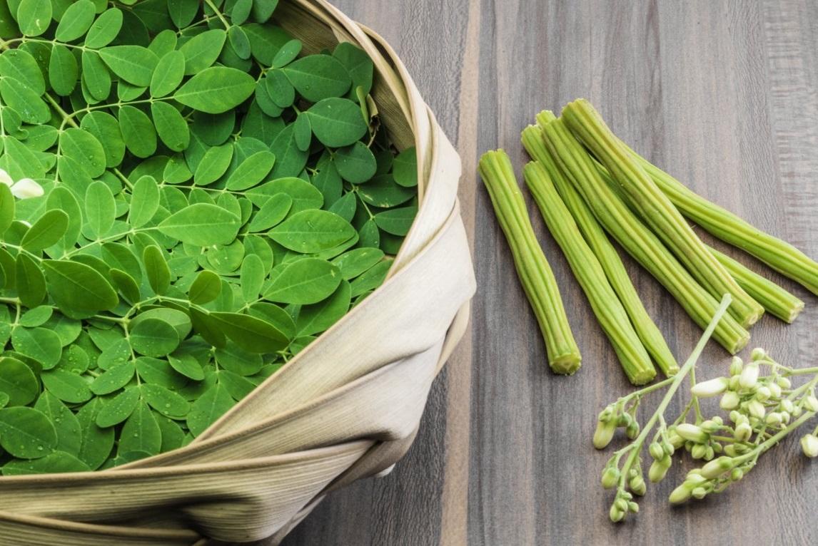 Moringa oleifera: come mangiare questo super cibo